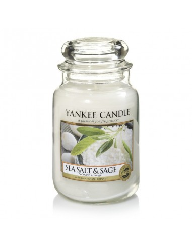 Sea Salt & Sage - Yankee Candle