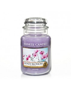 Honey Blossom - Yankee Candle