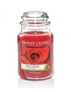 True Rose - Yankee Candle